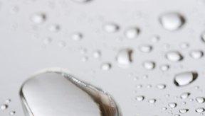 Las bacterias no pueden fermentar el agua pura.
