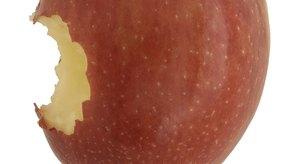 Existen muchas opciones de manzanas saludables además de la pendragon.