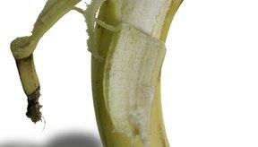 Comer alimentos altos en potasio como plátanos puede ayudar a eliminar el exceso de sodio del cuerpo.