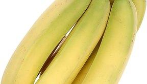 Los plátanos son un alimento bajo en oxalato.