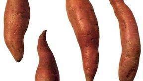 Una batata es uno de los alimentos más sanos que puedes comer.
