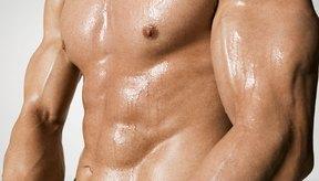 La glutamina es un aminoácido esencial para la fuerza muscular.