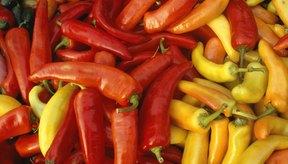 La capsaicina que se encuentra en los pimientos usados en las salsas picantes puede irritar el recubrimiento del estómago.