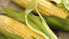 Una porción de maíz dulce aporta el 16 por ciento de los requerimientos de vitamina B-6.