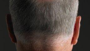 El crecimiento del pelo corto y fino es una señal muy alentadora.