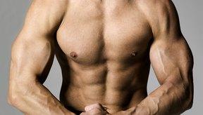 Gana masa muscular con una dieta balanceada que incluya proteínas y carbohidratos.