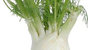 El hinojo contiene nutrientes que ayudan a protegerte del cáncer.