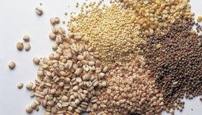Ten una gran variedad de granos para una variedad de nutrientes.
