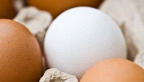 Una ingesta de proteínas de 100 g al día sería apropiada ya que los adultos consumen alrededor de 1.200 a 4.000 calorías al día.