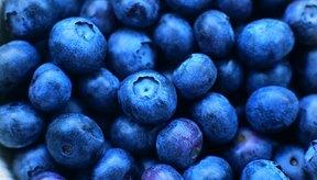 Los arándanos ayudan a regular los niveles de azúcar en la sangre de los diabéticos.