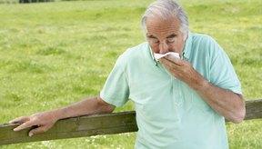 Los adultos mayores pueden enfermarse seriamente por un resfrío o gripe.