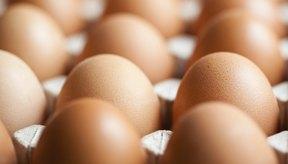 Los huevos son saludables.