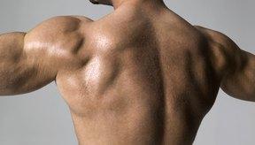 No necesitas hacer dominadas para tener una espalda fuerte.