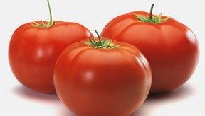 Los tomates son ricos en antioxidantes y en nutrientes esenciales para los diabéticos como la vitamina C.
