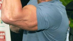 Los tríceps grandes hacer ver al brazo más desarrollado.