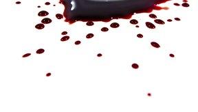 Las personas con tipo de sangre A deben comer predominantemente dietas vegetarianas.