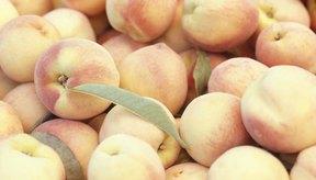 La deshidratación es una forma excelente de guardar lo que sobre de la cosecha de tus duraznos.