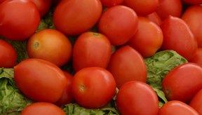 Los tomates contienen vitamina C.