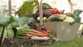 Puedes así poner en peligro el contenido nutricional de la verdura por privilegiar su gusto.