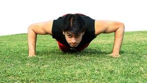 Los bíceps están activos mínimamente durante una flexión.