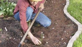 La jardinería es una actividad física ligera.