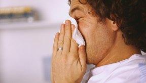 La liberación de histamina de las células del sistema inmune provoca una reacción alérgica.