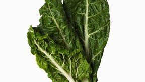 La acelga es rica en antioxidantes.