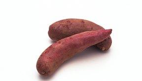 Las batatas son buenas para los diabéticos debido a su alto contenido de arginina.