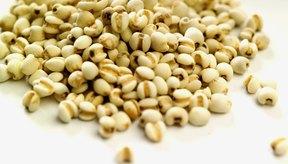 Los cereales integrales poseen un alto contenido de fibras.