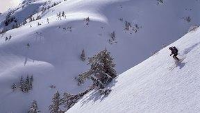Los patinadores en línea y otras atletas novatas tienen a menudo, estudios rápidos en esquí alpino.