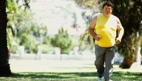 Ofrece un plan estructurado para ayudar a motivar a quienes son obesos.
