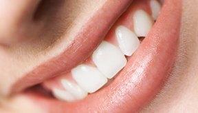 Los dientes hacen más que proporcionar una bonita sonrisa.