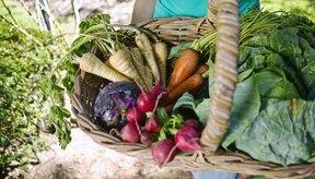 Los vegetales de hojas verdes son una fuente importante de magnesio.