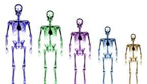 El magnesio ayuda a fortalecer los huesos.