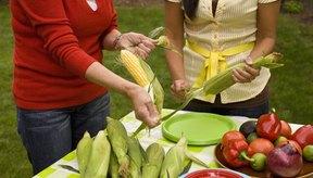 Incorpora maíz a tu dieta cotidiana.