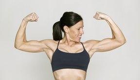 Más músculos equivale a más peso.