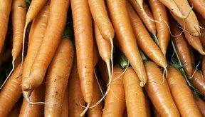 Las zanahorias contienen fructosa y glucosa.