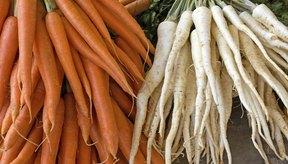 Raíces frescas de perejil y zanahorias delgadas.