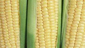 La luteína y la zeaxantina del maíz benefician tus ojos.