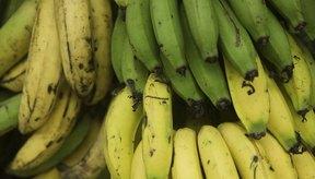 Plátanos en venta en un mercado.