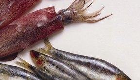 Las sardinas pueden estar contaminadas con mercurio, como otros pescados.