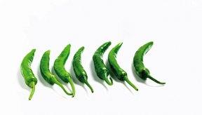 Pocas personas conocen los beneficios para la salud del chile verde.