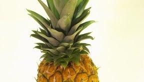 La piña fresca está llena de antioxidantes que combaten el cáncer.