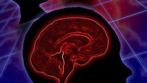 Los pacientes con encefalitis sufren cambios de personalidad y confusion.