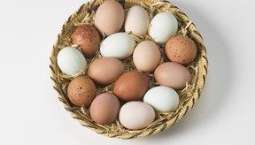 Huevos surtidos.