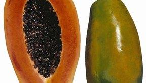 Evita los alimentos tales como la papaya al tomar Aldactone.