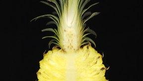 Aprende más sobre esta deliciosa fruta.