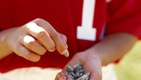 Las semillas de girasol son una buena fuente de vitamina E.