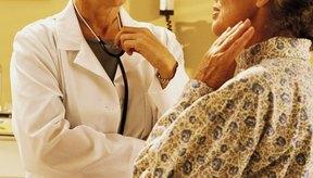 Cuatro pequeñas glándulas paratiroides se encuentran alrededor de la tiroides en la garganta.
