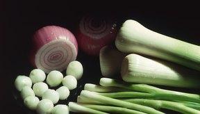 Las hojuelas de cebolla deshidratadas contienen 37.4 gramos de azúcar.